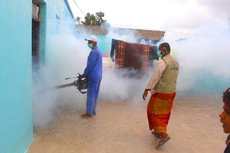 بانافع الإنسانية تكافح نواقل الأمراض في لحج